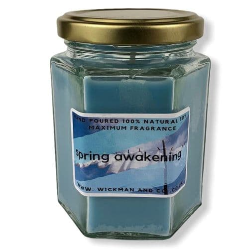 Spring Awakening (Lenore) Soy Wax Candle