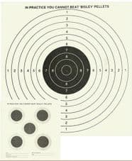 5 & 1 Double Sided Target