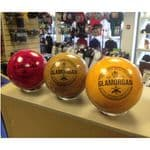 Glamorgan The Home of Welsh Cricket Coloured Cricket Ball