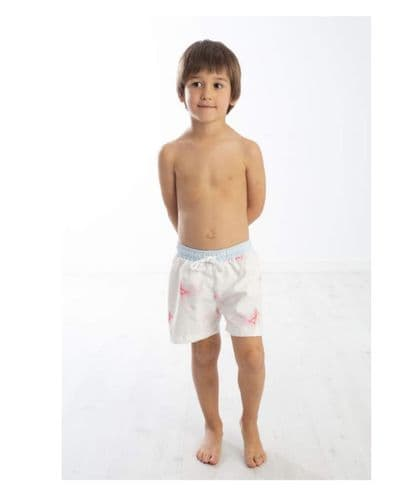 Meia Pata Fish Swim Shorts
