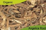 Organic Angelica Root 500gm