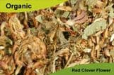Organic Red Clover Flower 50gm